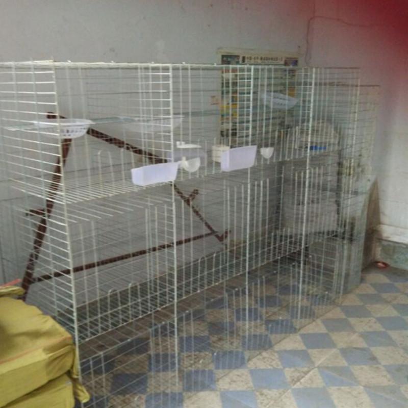 镀锌鸽子场养殖鸽笼三层鸽笼四层鸽笼规格齐全
