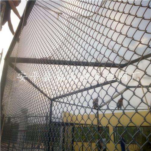 不锈钢绳网图片大全 不锈钢绳网各种规格 不锈钢绳网批发市场
