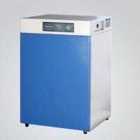 FXAB303-2恒温培养箱