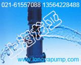 DL64-10离心泵的种类