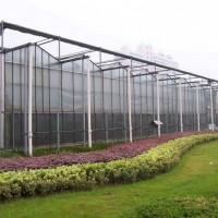 玻璃温室的维护保养