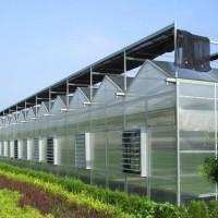 连栋温室设计建造特点